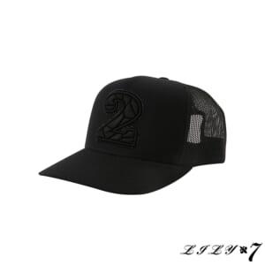 LILY7_no2_swr_CAP
